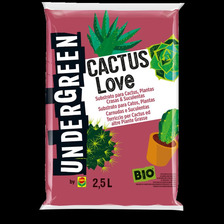 CACTUS LOVE TERRICCIO